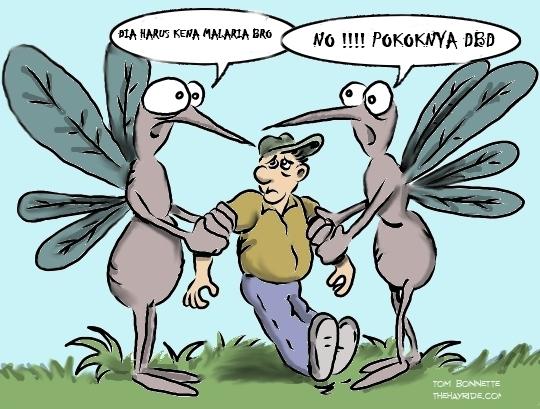 Perbedaan Nyamuk Malaria dengan Nyamuk Demam Berdarah